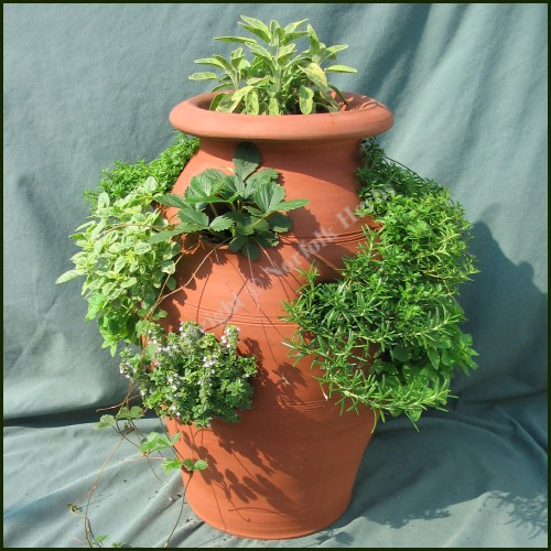 Herb Pot Collection