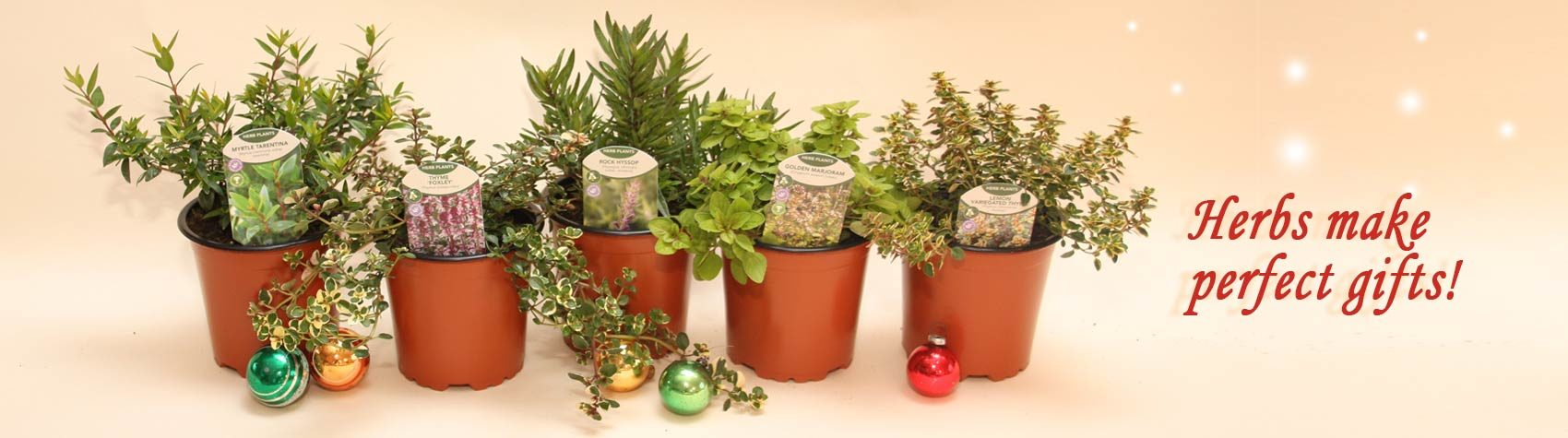 Buy Christmas Gifts - Gardening