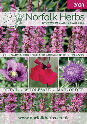 Download Norfolk Herbs Catalogue
